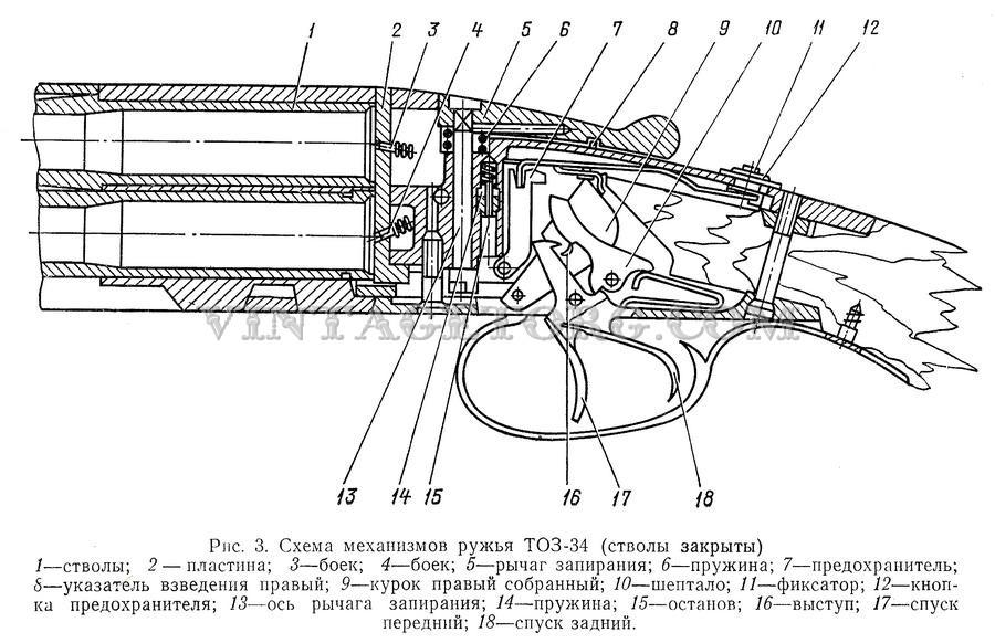 Ружья охотничьи ТОЗ 34 рисунок 6