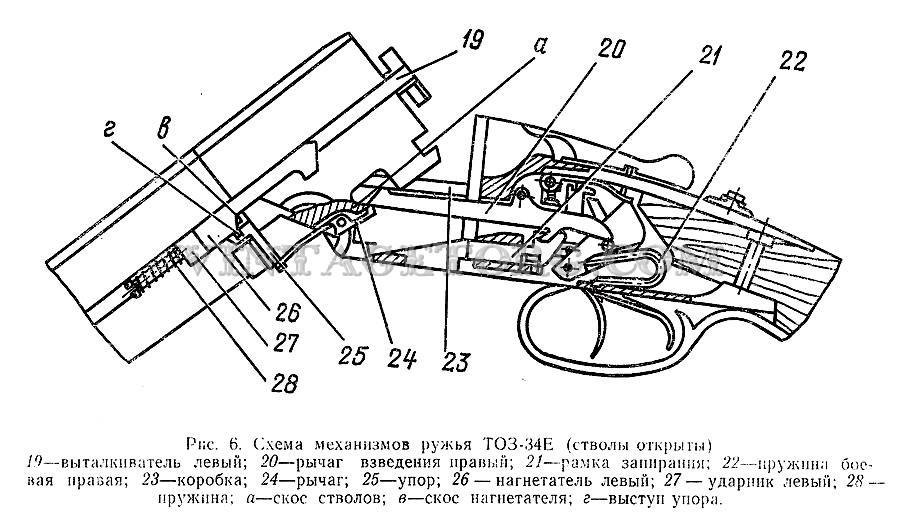 Ружья охотничьи ТОЗ 34 рисунок 3