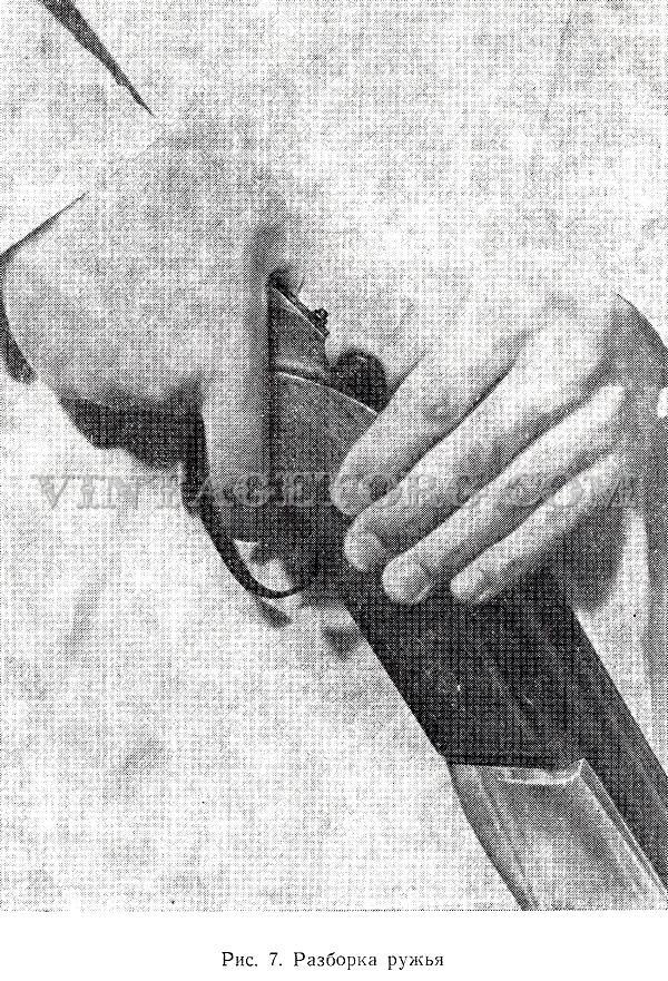Ружья охотничьи ТОЗ 34 рисунок 7